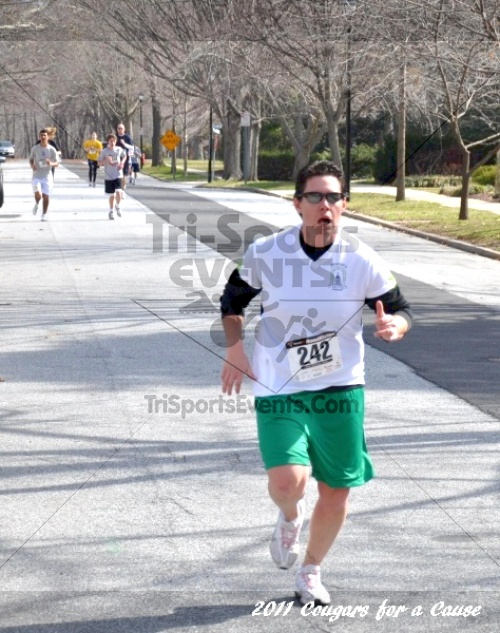Cougars for a Cause: MJ3's 5K Run/Walk<br><br><br><br><a href='http://www.trisportsevents.com/pics/11_Cougars_for_a_Cause_029.JPG' download='11_Cougars_for_a_Cause_029.JPG'>Click here to download.</a><Br><a href='http://www.facebook.com/sharer.php?u=http:%2F%2Fwww.trisportsevents.com%2Fpics%2F11_Cougars_for_a_Cause_029.JPG&t=Cougars for a Cause: MJ3's 5K Run/Walk' target='_blank'><img src='images/fb_share.png' width='100'></a>