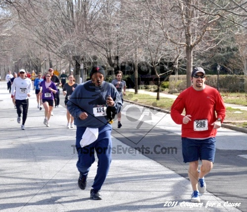 Cougars for a Cause: MJ3's 5K Run/Walk<br><br><br><br><a href='https://www.trisportsevents.com/pics/11_Cougars_for_a_Cause_037.JPG' download='11_Cougars_for_a_Cause_037.JPG'>Click here to download.</a><Br><a href='http://www.facebook.com/sharer.php?u=http:%2F%2Fwww.trisportsevents.com%2Fpics%2F11_Cougars_for_a_Cause_037.JPG&t=Cougars for a Cause: MJ3's 5K Run/Walk' target='_blank'><img src='images/fb_share.png' width='100'></a>