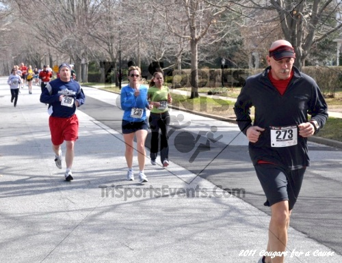 Cougars for a Cause: MJ3's 5K Run/Walk<br><br><br><br><a href='https://www.trisportsevents.com/pics/11_Cougars_for_a_Cause_039.JPG' download='11_Cougars_for_a_Cause_039.JPG'>Click here to download.</a><Br><a href='http://www.facebook.com/sharer.php?u=http:%2F%2Fwww.trisportsevents.com%2Fpics%2F11_Cougars_for_a_Cause_039.JPG&t=Cougars for a Cause: MJ3's 5K Run/Walk' target='_blank'><img src='images/fb_share.png' width='100'></a>