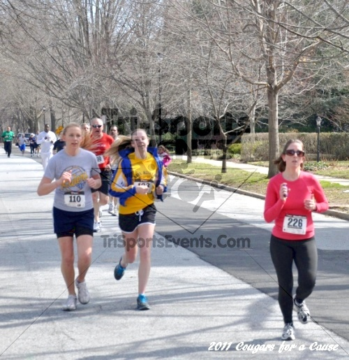Cougars for a Cause: MJ3's 5K Run/Walk<br><br><br><br><a href='http://www.trisportsevents.com/pics/11_Cougars_for_a_Cause_042.JPG' download='11_Cougars_for_a_Cause_042.JPG'>Click here to download.</a><Br><a href='http://www.facebook.com/sharer.php?u=http:%2F%2Fwww.trisportsevents.com%2Fpics%2F11_Cougars_for_a_Cause_042.JPG&t=Cougars for a Cause: MJ3's 5K Run/Walk' target='_blank'><img src='images/fb_share.png' width='100'></a>