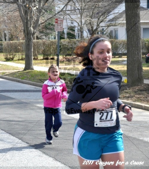 Cougars for a Cause: MJ3's 5K Run/Walk<br><br><br><br><a href='http://www.trisportsevents.com/pics/11_Cougars_for_a_Cause_044.JPG' download='11_Cougars_for_a_Cause_044.JPG'>Click here to download.</a><Br><a href='http://www.facebook.com/sharer.php?u=http:%2F%2Fwww.trisportsevents.com%2Fpics%2F11_Cougars_for_a_Cause_044.JPG&t=Cougars for a Cause: MJ3's 5K Run/Walk' target='_blank'><img src='images/fb_share.png' width='100'></a>