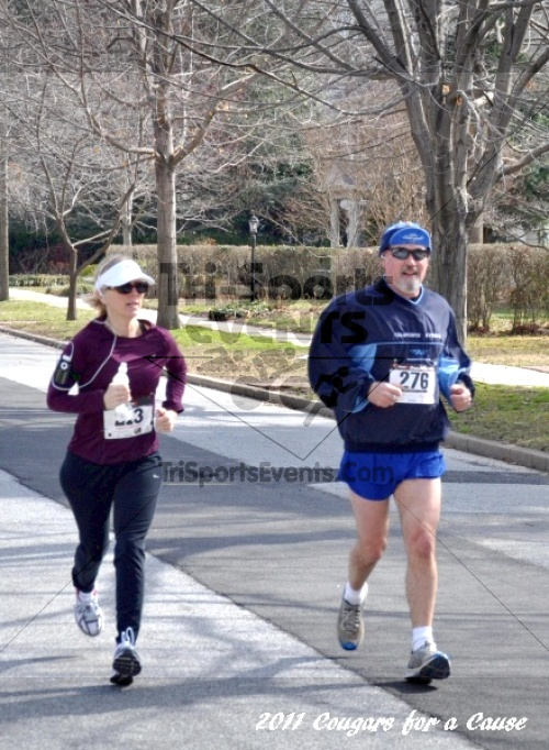 Cougars for a Cause: MJ3's 5K Run/Walk<br><br><br><br><a href='http://www.trisportsevents.com/pics/11_Cougars_for_a_Cause_048.JPG' download='11_Cougars_for_a_Cause_048.JPG'>Click here to download.</a><Br><a href='http://www.facebook.com/sharer.php?u=http:%2F%2Fwww.trisportsevents.com%2Fpics%2F11_Cougars_for_a_Cause_048.JPG&t=Cougars for a Cause: MJ3's 5K Run/Walk' target='_blank'><img src='images/fb_share.png' width='100'></a>