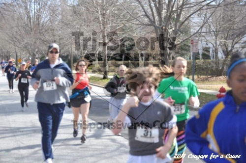 Cougars for a Cause: MJ3's 5K Run/Walk<br><br><br><br><a href='http://www.trisportsevents.com/pics/11_Cougars_for_a_Cause_059.JPG' download='11_Cougars_for_a_Cause_059.JPG'>Click here to download.</a><Br><a href='http://www.facebook.com/sharer.php?u=http:%2F%2Fwww.trisportsevents.com%2Fpics%2F11_Cougars_for_a_Cause_059.JPG&t=Cougars for a Cause: MJ3's 5K Run/Walk' target='_blank'><img src='images/fb_share.png' width='100'></a>