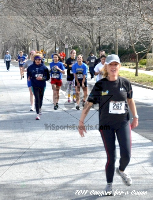 Cougars for a Cause: MJ3's 5K Run/Walk<br><br><br><br><a href='http://www.trisportsevents.com/pics/11_Cougars_for_a_Cause_060.JPG' download='11_Cougars_for_a_Cause_060.JPG'>Click here to download.</a><Br><a href='http://www.facebook.com/sharer.php?u=http:%2F%2Fwww.trisportsevents.com%2Fpics%2F11_Cougars_for_a_Cause_060.JPG&t=Cougars for a Cause: MJ3's 5K Run/Walk' target='_blank'><img src='images/fb_share.png' width='100'></a>