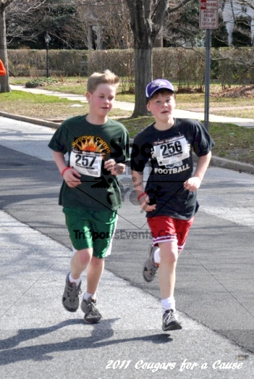 Cougars for a Cause: MJ3's 5K Run/Walk<br><br><br><br><a href='http://www.trisportsevents.com/pics/11_Cougars_for_a_Cause_063.JPG' download='11_Cougars_for_a_Cause_063.JPG'>Click here to download.</a><Br><a href='http://www.facebook.com/sharer.php?u=http:%2F%2Fwww.trisportsevents.com%2Fpics%2F11_Cougars_for_a_Cause_063.JPG&t=Cougars for a Cause: MJ3's 5K Run/Walk' target='_blank'><img src='images/fb_share.png' width='100'></a>