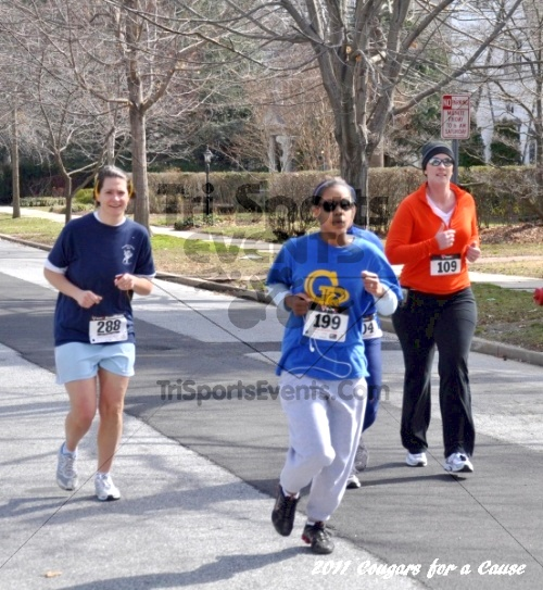 Cougars for a Cause: MJ3's 5K Run/Walk<br><br><br><br><a href='https://www.trisportsevents.com/pics/11_Cougars_for_a_Cause_065.JPG' download='11_Cougars_for_a_Cause_065.JPG'>Click here to download.</a><Br><a href='http://www.facebook.com/sharer.php?u=http:%2F%2Fwww.trisportsevents.com%2Fpics%2F11_Cougars_for_a_Cause_065.JPG&t=Cougars for a Cause: MJ3's 5K Run/Walk' target='_blank'><img src='images/fb_share.png' width='100'></a>