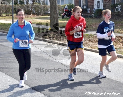 Cougars for a Cause: MJ3's 5K Run/Walk<br><br><br><br><a href='https://www.trisportsevents.com/pics/11_Cougars_for_a_Cause_066.JPG' download='11_Cougars_for_a_Cause_066.JPG'>Click here to download.</a><Br><a href='http://www.facebook.com/sharer.php?u=http:%2F%2Fwww.trisportsevents.com%2Fpics%2F11_Cougars_for_a_Cause_066.JPG&t=Cougars for a Cause: MJ3's 5K Run/Walk' target='_blank'><img src='images/fb_share.png' width='100'></a>