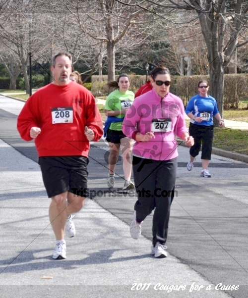 Cougars for a Cause: MJ3's 5K Run/Walk<br><br><br><br><a href='https://www.trisportsevents.com/pics/11_Cougars_for_a_Cause_080.JPG' download='11_Cougars_for_a_Cause_080.JPG'>Click here to download.</a><Br><a href='http://www.facebook.com/sharer.php?u=http:%2F%2Fwww.trisportsevents.com%2Fpics%2F11_Cougars_for_a_Cause_080.JPG&t=Cougars for a Cause: MJ3's 5K Run/Walk' target='_blank'><img src='images/fb_share.png' width='100'></a>