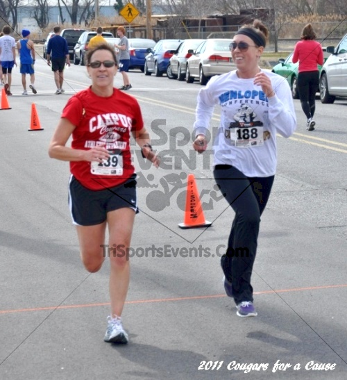 Cougars for a Cause: MJ3's 5K Run/Walk<br><br><br><br><a href='http://www.trisportsevents.com/pics/11_Cougars_for_a_Cause_116.JPG' download='11_Cougars_for_a_Cause_116.JPG'>Click here to download.</a><Br><a href='http://www.facebook.com/sharer.php?u=http:%2F%2Fwww.trisportsevents.com%2Fpics%2F11_Cougars_for_a_Cause_116.JPG&t=Cougars for a Cause: MJ3's 5K Run/Walk' target='_blank'><img src='images/fb_share.png' width='100'></a>