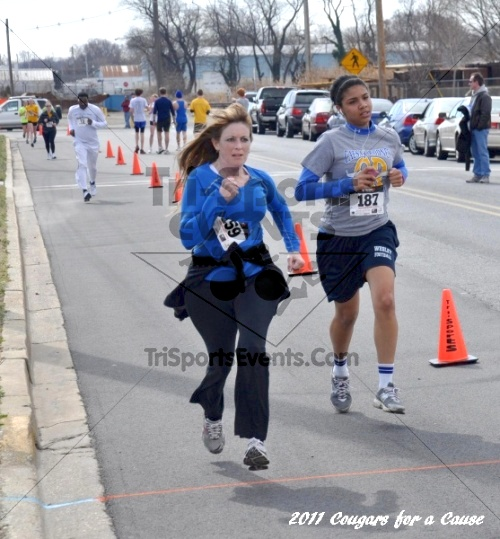 Cougars for a Cause: MJ3's 5K Run/Walk<br><br><br><br><a href='http://www.trisportsevents.com/pics/11_Cougars_for_a_Cause_120.JPG' download='11_Cougars_for_a_Cause_120.JPG'>Click here to download.</a><Br><a href='http://www.facebook.com/sharer.php?u=http:%2F%2Fwww.trisportsevents.com%2Fpics%2F11_Cougars_for_a_Cause_120.JPG&t=Cougars for a Cause: MJ3's 5K Run/Walk' target='_blank'><img src='images/fb_share.png' width='100'></a>