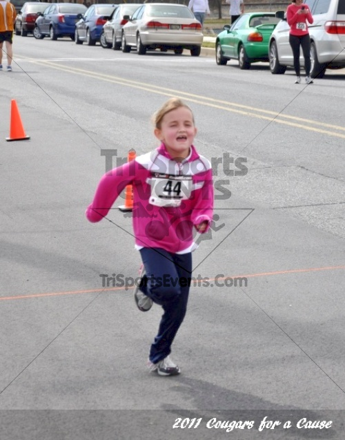Cougars for a Cause: MJ3's 5K Run/Walk<br><br><br><br><a href='http://www.trisportsevents.com/pics/11_Cougars_for_a_Cause_128.JPG' download='11_Cougars_for_a_Cause_128.JPG'>Click here to download.</a><Br><a href='http://www.facebook.com/sharer.php?u=http:%2F%2Fwww.trisportsevents.com%2Fpics%2F11_Cougars_for_a_Cause_128.JPG&t=Cougars for a Cause: MJ3's 5K Run/Walk' target='_blank'><img src='images/fb_share.png' width='100'></a>