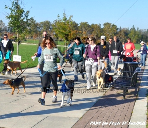 3rd PAWS for People Wag-n-Walk &5K Run<br><br><br><br><a href='http://www.trisportsevents.com/pics/11_PAWS_5K_011.JPG' download='11_PAWS_5K_011.JPG'>Click here to download.</a><Br><a href='http://www.facebook.com/sharer.php?u=http:%2F%2Fwww.trisportsevents.com%2Fpics%2F11_PAWS_5K_011.JPG&t=3rd PAWS for People Wag-n-Walk &5K Run' target='_blank'><img src='images/fb_share.png' width='100'></a>