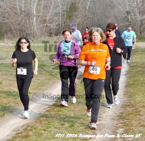 Kent County SPCA Scamper for Paws & Claws in Memory of Peter Hansen<br><br><br><br><a href='http://www.trisportsevents.com/pics/11_SPCA_5K_040.JPG' download='11_SPCA_5K_040.JPG'>Click here to download.</a><Br><a href='http://www.facebook.com/sharer.php?u=http:%2F%2Fwww.trisportsevents.com%2Fpics%2F11_SPCA_5K_040.JPG&t=Kent County SPCA Scamper for Paws & Claws in Memory of Peter Hansen' target='_blank'><img src='images/fb_share.png' width='100'></a>