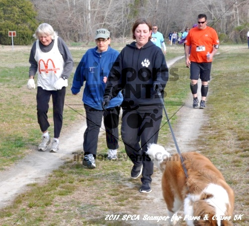 Kent County SPCA Scamper for Paws & Claws in Memory of Peter Hansen<br><br><br><br><a href='https://www.trisportsevents.com/pics/11_SPCA_5K_048.JPG' download='11_SPCA_5K_048.JPG'>Click here to download.</a><Br><a href='http://www.facebook.com/sharer.php?u=http:%2F%2Fwww.trisportsevents.com%2Fpics%2F11_SPCA_5K_048.JPG&t=Kent County SPCA Scamper for Paws & Claws in Memory of Peter Hansen' target='_blank'><img src='images/fb_share.png' width='100'></a>