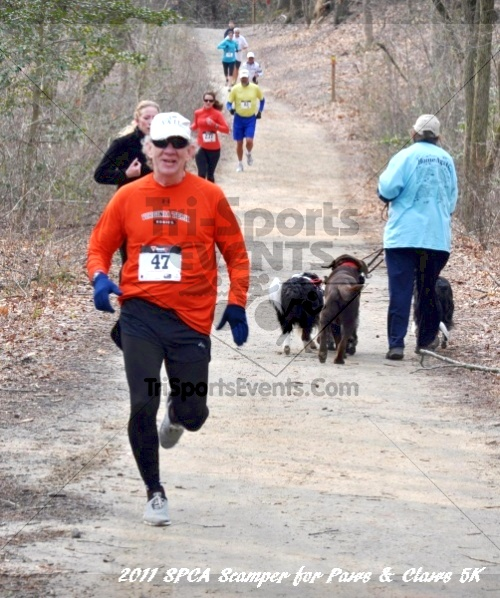 Kent County SPCA Scamper for Paws & Claws in Memory of Peter Hansen<br><br><br><br><a href='https://www.trisportsevents.com/pics/11_SPCA_5K_081.JPG' download='11_SPCA_5K_081.JPG'>Click here to download.</a><Br><a href='http://www.facebook.com/sharer.php?u=http:%2F%2Fwww.trisportsevents.com%2Fpics%2F11_SPCA_5K_081.JPG&t=Kent County SPCA Scamper for Paws & Claws in Memory of Peter Hansen' target='_blank'><img src='images/fb_share.png' width='100'></a>