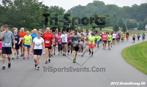 BrainStrong 5K Run/Walk<br><br><br><br><a href='http://www.trisportsevents.com/pics/12_BrainStrong_5K_004.JPG' download='12_BrainStrong_5K_004.JPG'>Click here to download.</a><Br><a href='http://www.facebook.com/sharer.php?u=http:%2F%2Fwww.trisportsevents.com%2Fpics%2F12_BrainStrong_5K_004.JPG&t=BrainStrong 5K Run/Walk' target='_blank'><img src='images/fb_share.png' width='100'></a>