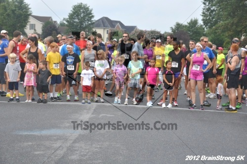 BrainStrong 5K Run/Walk<br><br><br><br><a href='http://www.trisportsevents.com/pics/12_BrainStrong_5K_009.JPG' download='12_BrainStrong_5K_009.JPG'>Click here to download.</a><Br><a href='http://www.facebook.com/sharer.php?u=http:%2F%2Fwww.trisportsevents.com%2Fpics%2F12_BrainStrong_5K_009.JPG&t=BrainStrong 5K Run/Walk' target='_blank'><img src='images/fb_share.png' width='100'></a>