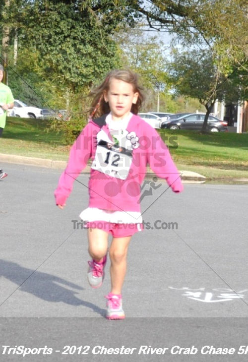 Chester River Crab Chase 5K<br><br><br><br><a href='http://www.trisportsevents.com/pics/12_Chester_River_Crab_Chase_5K_013.JPG' download='12_Chester_River_Crab_Chase_5K_013.JPG'>Click here to download.</a><Br><a href='http://www.facebook.com/sharer.php?u=http:%2F%2Fwww.trisportsevents.com%2Fpics%2F12_Chester_River_Crab_Chase_5K_013.JPG&t=Chester River Crab Chase 5K' target='_blank'><img src='images/fb_share.png' width='100'></a>