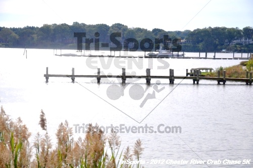 Chester River Crab Chase 5K<br><br><br><br><a href='http://www.trisportsevents.com/pics/12_Chester_River_Crab_Chase_5K_058.JPG' download='12_Chester_River_Crab_Chase_5K_058.JPG'>Click here to download.</a><Br><a href='http://www.facebook.com/sharer.php?u=http:%2F%2Fwww.trisportsevents.com%2Fpics%2F12_Chester_River_Crab_Chase_5K_058.JPG&t=Chester River Crab Chase 5K' target='_blank'><img src='images/fb_share.png' width='100'></a>