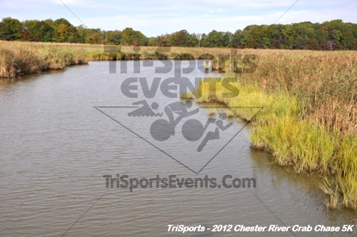 Chester River Crab Chase 5K<br><br><br><br><a href='http://www.trisportsevents.com/pics/12_Chester_River_Crab_Chase_5K_059.JPG' download='12_Chester_River_Crab_Chase_5K_059.JPG'>Click here to download.</a><Br><a href='http://www.facebook.com/sharer.php?u=http:%2F%2Fwww.trisportsevents.com%2Fpics%2F12_Chester_River_Crab_Chase_5K_059.JPG&t=Chester River Crab Chase 5K' target='_blank'><img src='images/fb_share.png' width='100'></a>