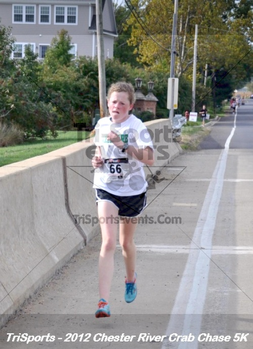 Chester River Crab Chase 5K<br><br><br><br><a href='https://www.trisportsevents.com/pics/12_Chester_River_Crab_Chase_5K_076.JPG' download='12_Chester_River_Crab_Chase_5K_076.JPG'>Click here to download.</a><Br><a href='http://www.facebook.com/sharer.php?u=http:%2F%2Fwww.trisportsevents.com%2Fpics%2F12_Chester_River_Crab_Chase_5K_076.JPG&t=Chester River Crab Chase 5K' target='_blank'><img src='images/fb_share.png' width='100'></a>