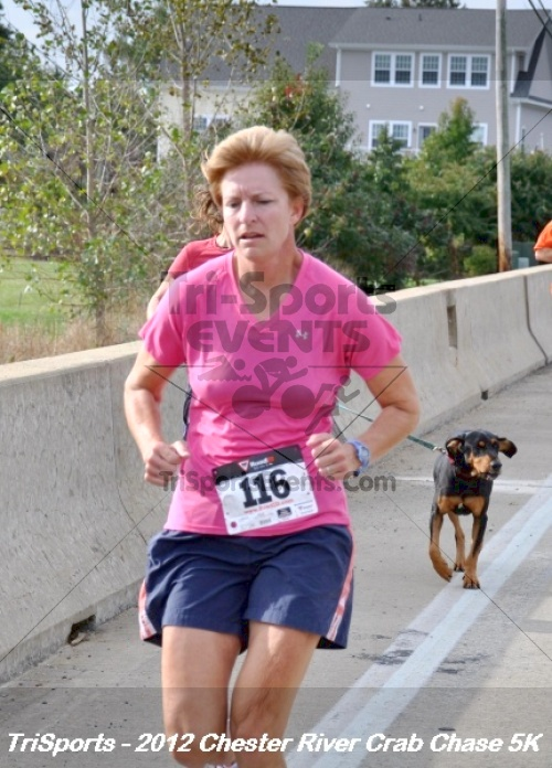 Chester River Crab Chase 5K<br><br><br><br><a href='https://www.trisportsevents.com/pics/12_Chester_River_Crab_Chase_5K_091.JPG' download='12_Chester_River_Crab_Chase_5K_091.JPG'>Click here to download.</a><Br><a href='http://www.facebook.com/sharer.php?u=http:%2F%2Fwww.trisportsevents.com%2Fpics%2F12_Chester_River_Crab_Chase_5K_091.JPG&t=Chester River Crab Chase 5K' target='_blank'><img src='images/fb_share.png' width='100'></a>