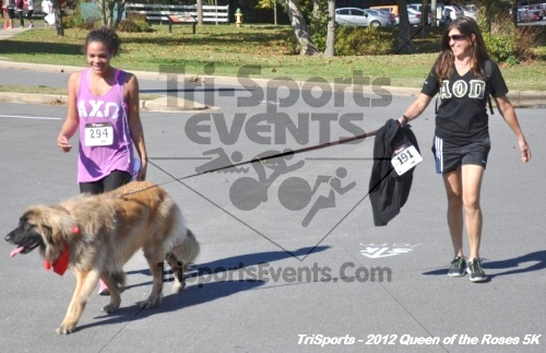 Queen of the Roses 5K Run/Walk<br><br><br><br><a href='https://www.trisportsevents.com/pics/12_Queen_of_Roses_5K_171.JPG' download='12_Queen_of_Roses_5K_171.JPG'>Click here to download.</a><Br><a href='http://www.facebook.com/sharer.php?u=http:%2F%2Fwww.trisportsevents.com%2Fpics%2F12_Queen_of_Roses_5K_171.JPG&t=Queen of the Roses 5K Run/Walk' target='_blank'><img src='images/fb_share.png' width='100'></a>