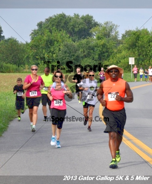 Gator Gallop 5K Run/Walk & 5 Mile Run<br><br><br><br><a href='https://www.trisportsevents.com/pics/13Gator_Gallop_5K_020.JPG' download='13Gator_Gallop_5K_020.JPG'>Click here to download.</a><Br><a href='http://www.facebook.com/sharer.php?u=http:%2F%2Fwww.trisportsevents.com%2Fpics%2F13Gator_Gallop_5K_020.JPG&t=Gator Gallop 5K Run/Walk & 5 Mile Run' target='_blank'><img src='images/fb_share.png' width='100'></a>