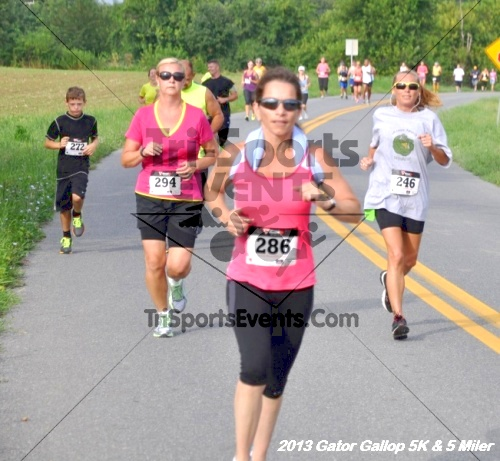 Gator Gallop 5K Run/Walk & 5 Mile Run<br><br><br><br><a href='https://www.trisportsevents.com/pics/13Gator_Gallop_5K_022.JPG' download='13Gator_Gallop_5K_022.JPG'>Click here to download.</a><Br><a href='http://www.facebook.com/sharer.php?u=http:%2F%2Fwww.trisportsevents.com%2Fpics%2F13Gator_Gallop_5K_022.JPG&t=Gator Gallop 5K Run/Walk & 5 Mile Run' target='_blank'><img src='images/fb_share.png' width='100'></a>