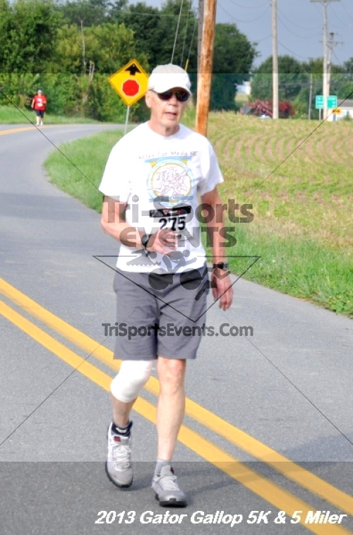Gator Gallop 5K Run/Walk & 5 Mile Run<br><br><br><br><a href='http://www.trisportsevents.com/pics/13Gator_Gallop_5K_048.JPG' download='13Gator_Gallop_5K_048.JPG'>Click here to download.</a><Br><a href='http://www.facebook.com/sharer.php?u=http:%2F%2Fwww.trisportsevents.com%2Fpics%2F13Gator_Gallop_5K_048.JPG&t=Gator Gallop 5K Run/Walk & 5 Mile Run' target='_blank'><img src='images/fb_share.png' width='100'></a>
