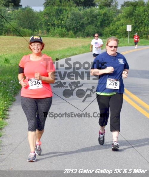 Gator Gallop 5K Run/Walk & 5 Mile Run<br><br><br><br><a href='https://www.trisportsevents.com/pics/13Gator_Gallop_5K_049.JPG' download='13Gator_Gallop_5K_049.JPG'>Click here to download.</a><Br><a href='http://www.facebook.com/sharer.php?u=http:%2F%2Fwww.trisportsevents.com%2Fpics%2F13Gator_Gallop_5K_049.JPG&t=Gator Gallop 5K Run/Walk & 5 Mile Run' target='_blank'><img src='images/fb_share.png' width='100'></a>