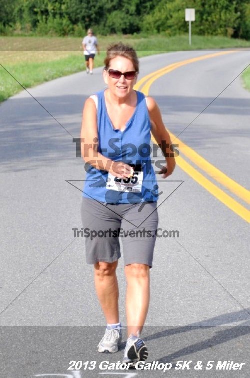 Gator Gallop 5K Run/Walk & 5 Mile Run<br><br><br><br><a href='http://www.trisportsevents.com/pics/13Gator_Gallop_5K_053.JPG' download='13Gator_Gallop_5K_053.JPG'>Click here to download.</a><Br><a href='http://www.facebook.com/sharer.php?u=http:%2F%2Fwww.trisportsevents.com%2Fpics%2F13Gator_Gallop_5K_053.JPG&t=Gator Gallop 5K Run/Walk & 5 Mile Run' target='_blank'><img src='images/fb_share.png' width='100'></a>