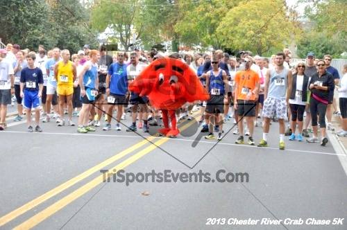 Chester River Crab Chase 5K Run/Walk<br><br><br><br><a href='http://www.trisportsevents.com/pics/13_Chester_River_Crab_Chase_5K_023.JPG' download='13_Chester_River_Crab_Chase_5K_023.JPG'>Click here to download.</a><Br><a href='http://www.facebook.com/sharer.php?u=http:%2F%2Fwww.trisportsevents.com%2Fpics%2F13_Chester_River_Crab_Chase_5K_023.JPG&t=Chester River Crab Chase 5K Run/Walk' target='_blank'><img src='images/fb_share.png' width='100'></a>