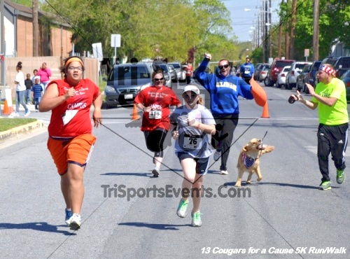 Cougars for a Cause 5K Run/Walk for Ben<br><br><br><br><a href='https://www.trisportsevents.com/pics/13_Cougars_for_a_Cause_176.JPG' download='13_Cougars_for_a_Cause_176.JPG'>Click here to download.</a><Br><a href='http://www.facebook.com/sharer.php?u=http:%2F%2Fwww.trisportsevents.com%2Fpics%2F13_Cougars_for_a_Cause_176.JPG&t=Cougars for a Cause 5K Run/Walk for Ben' target='_blank'><img src='images/fb_share.png' width='100'></a>