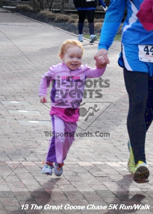 The Great Goose Chase 5K Run/Walk<br><br><br><br><a href='http://www.trisportsevents.com/pics/13_Great_Goose_Chase_007.JPG' download='13_Great_Goose_Chase_007.JPG'>Click here to download.</a><Br><a href='http://www.facebook.com/sharer.php?u=http:%2F%2Fwww.trisportsevents.com%2Fpics%2F13_Great_Goose_Chase_007.JPG&t=The Great Goose Chase 5K Run/Walk' target='_blank'><img src='images/fb_share.png' width='100'></a>