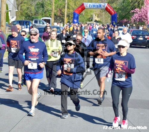 SPCA Scamper for Paws & Claws 5K Run/Walk<br><br><br><br><a href='https://www.trisportsevents.com/pics/13_SPCA_5K_024.JPG' download='13_SPCA_5K_024.JPG'>Click here to download.</a><Br><a href='http://www.facebook.com/sharer.php?u=http:%2F%2Fwww.trisportsevents.com%2Fpics%2F13_SPCA_5K_024.JPG&t=SPCA Scamper for Paws & Claws 5K Run/Walk' target='_blank'><img src='images/fb_share.png' width='100'></a>