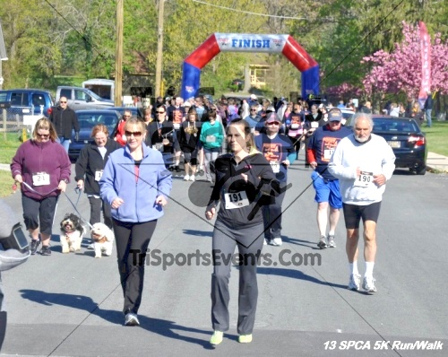 SPCA Scamper for Paws & Claws 5K Run/Walk<br><br><br><br><a href='https://www.trisportsevents.com/pics/13_SPCA_5K_025.JPG' download='13_SPCA_5K_025.JPG'>Click here to download.</a><Br><a href='http://www.facebook.com/sharer.php?u=http:%2F%2Fwww.trisportsevents.com%2Fpics%2F13_SPCA_5K_025.JPG&t=SPCA Scamper for Paws & Claws 5K Run/Walk' target='_blank'><img src='images/fb_share.png' width='100'></a>