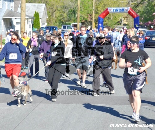 SPCA Scamper for Paws & Claws 5K Run/Walk<br><br><br><br><a href='https://www.trisportsevents.com/pics/13_SPCA_5K_035.JPG' download='13_SPCA_5K_035.JPG'>Click here to download.</a><Br><a href='http://www.facebook.com/sharer.php?u=http:%2F%2Fwww.trisportsevents.com%2Fpics%2F13_SPCA_5K_035.JPG&t=SPCA Scamper for Paws & Claws 5K Run/Walk' target='_blank'><img src='images/fb_share.png' width='100'></a>