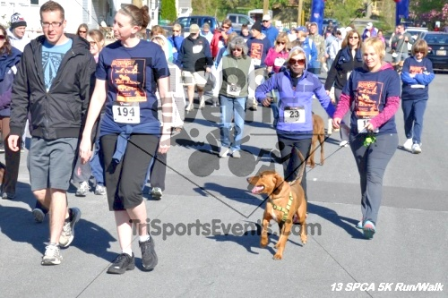 SPCA Scamper for Paws & Claws 5K Run/Walk<br><br><br><br><a href='https://www.trisportsevents.com/pics/13_SPCA_5K_037.JPG' download='13_SPCA_5K_037.JPG'>Click here to download.</a><Br><a href='http://www.facebook.com/sharer.php?u=http:%2F%2Fwww.trisportsevents.com%2Fpics%2F13_SPCA_5K_037.JPG&t=SPCA Scamper for Paws & Claws 5K Run/Walk' target='_blank'><img src='images/fb_share.png' width='100'></a>