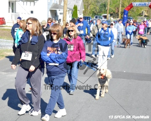 SPCA Scamper for Paws & Claws 5K Run/Walk<br><br><br><br><a href='https://www.trisportsevents.com/pics/13_SPCA_5K_038.JPG' download='13_SPCA_5K_038.JPG'>Click here to download.</a><Br><a href='http://www.facebook.com/sharer.php?u=http:%2F%2Fwww.trisportsevents.com%2Fpics%2F13_SPCA_5K_038.JPG&t=SPCA Scamper for Paws & Claws 5K Run/Walk' target='_blank'><img src='images/fb_share.png' width='100'></a>