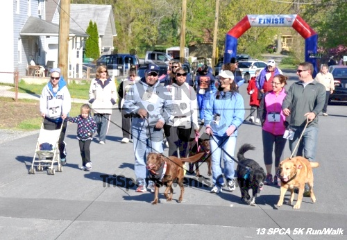 SPCA Scamper for Paws & Claws 5K Run/Walk<br><br><br><br><a href='https://www.trisportsevents.com/pics/13_SPCA_5K_041.JPG' download='13_SPCA_5K_041.JPG'>Click here to download.</a><Br><a href='http://www.facebook.com/sharer.php?u=http:%2F%2Fwww.trisportsevents.com%2Fpics%2F13_SPCA_5K_041.JPG&t=SPCA Scamper for Paws & Claws 5K Run/Walk' target='_blank'><img src='images/fb_share.png' width='100'></a>