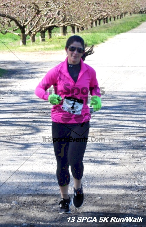 SPCA Scamper for Paws & Claws 5K Run/Walk<br><br><br><br><a href='https://www.trisportsevents.com/pics/13_SPCA_5K_057.JPG' download='13_SPCA_5K_057.JPG'>Click here to download.</a><Br><a href='http://www.facebook.com/sharer.php?u=http:%2F%2Fwww.trisportsevents.com%2Fpics%2F13_SPCA_5K_057.JPG&t=SPCA Scamper for Paws & Claws 5K Run/Walk' target='_blank'><img src='images/fb_share.png' width='100'></a>