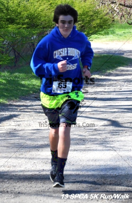 SPCA Scamper for Paws & Claws 5K Run/Walk<br><br><br><br><a href='https://www.trisportsevents.com/pics/13_SPCA_5K_058.JPG' download='13_SPCA_5K_058.JPG'>Click here to download.</a><Br><a href='http://www.facebook.com/sharer.php?u=http:%2F%2Fwww.trisportsevents.com%2Fpics%2F13_SPCA_5K_058.JPG&t=SPCA Scamper for Paws & Claws 5K Run/Walk' target='_blank'><img src='images/fb_share.png' width='100'></a>