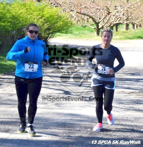 SPCA Scamper for Paws & Claws 5K Run/Walk<br><br><br><br><a href='https://www.trisportsevents.com/pics/13_SPCA_5K_077.JPG' download='13_SPCA_5K_077.JPG'>Click here to download.</a><Br><a href='http://www.facebook.com/sharer.php?u=http:%2F%2Fwww.trisportsevents.com%2Fpics%2F13_SPCA_5K_077.JPG&t=SPCA Scamper for Paws & Claws 5K Run/Walk' target='_blank'><img src='images/fb_share.png' width='100'></a>