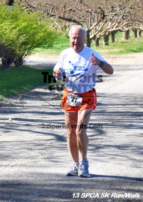 SPCA Scamper for Paws & Claws 5K Run/Walk<br><br><br><br><a href='https://www.trisportsevents.com/pics/13_SPCA_5K_079.JPG' download='13_SPCA_5K_079.JPG'>Click here to download.</a><Br><a href='http://www.facebook.com/sharer.php?u=http:%2F%2Fwww.trisportsevents.com%2Fpics%2F13_SPCA_5K_079.JPG&t=SPCA Scamper for Paws & Claws 5K Run/Walk' target='_blank'><img src='images/fb_share.png' width='100'></a>
