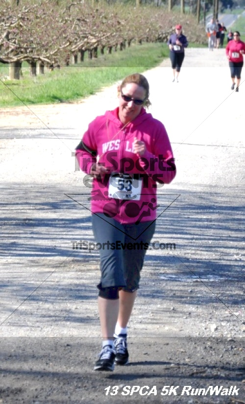 SPCA Scamper for Paws & Claws 5K Run/Walk<br><br><br><br><a href='https://www.trisportsevents.com/pics/13_SPCA_5K_080.JPG' download='13_SPCA_5K_080.JPG'>Click here to download.</a><Br><a href='http://www.facebook.com/sharer.php?u=http:%2F%2Fwww.trisportsevents.com%2Fpics%2F13_SPCA_5K_080.JPG&t=SPCA Scamper for Paws & Claws 5K Run/Walk' target='_blank'><img src='images/fb_share.png' width='100'></a>