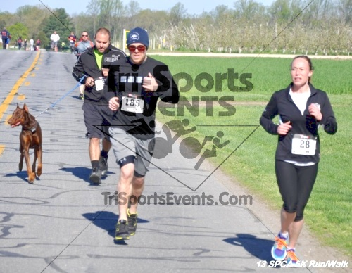 SPCA Scamper for Paws & Claws 5K Run/Walk<br><br><br><br><a href='https://www.trisportsevents.com/pics/13_SPCA_5K_096.JPG' download='13_SPCA_5K_096.JPG'>Click here to download.</a><Br><a href='http://www.facebook.com/sharer.php?u=http:%2F%2Fwww.trisportsevents.com%2Fpics%2F13_SPCA_5K_096.JPG&t=SPCA Scamper for Paws & Claws 5K Run/Walk' target='_blank'><img src='images/fb_share.png' width='100'></a>