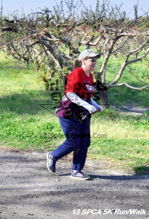 SPCA Scamper for Paws & Claws 5K Run/Walk<br><br><br><br><a href='https://www.trisportsevents.com/pics/13_SPCA_5K_099.JPG' download='13_SPCA_5K_099.JPG'>Click here to download.</a><Br><a href='http://www.facebook.com/sharer.php?u=http:%2F%2Fwww.trisportsevents.com%2Fpics%2F13_SPCA_5K_099.JPG&t=SPCA Scamper for Paws & Claws 5K Run/Walk' target='_blank'><img src='images/fb_share.png' width='100'></a>