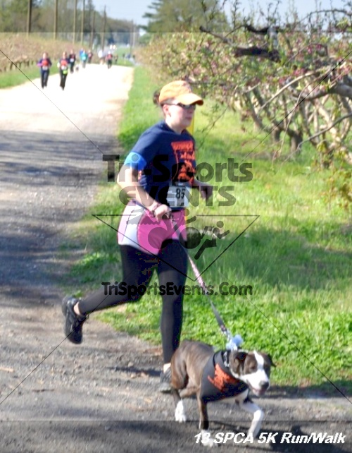 SPCA Scamper for Paws & Claws 5K Run/Walk<br><br><br><br><a href='https://www.trisportsevents.com/pics/13_SPCA_5K_101.JPG' download='13_SPCA_5K_101.JPG'>Click here to download.</a><Br><a href='http://www.facebook.com/sharer.php?u=http:%2F%2Fwww.trisportsevents.com%2Fpics%2F13_SPCA_5K_101.JPG&t=SPCA Scamper for Paws & Claws 5K Run/Walk' target='_blank'><img src='images/fb_share.png' width='100'></a>
