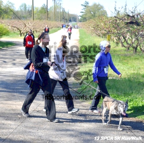 SPCA Scamper for Paws & Claws 5K Run/Walk<br><br><br><br><a href='https://www.trisportsevents.com/pics/13_SPCA_5K_125.JPG' download='13_SPCA_5K_125.JPG'>Click here to download.</a><Br><a href='http://www.facebook.com/sharer.php?u=http:%2F%2Fwww.trisportsevents.com%2Fpics%2F13_SPCA_5K_125.JPG&t=SPCA Scamper for Paws & Claws 5K Run/Walk' target='_blank'><img src='images/fb_share.png' width='100'></a>
